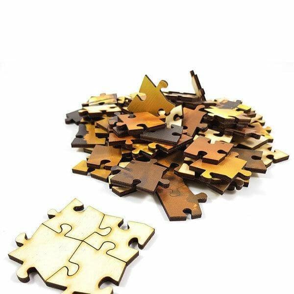 Puzzle leseni delci