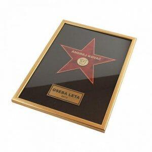 Pohvala za posebne dosežke Hollywoodska zvezda