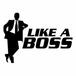 Like a boss nalepka